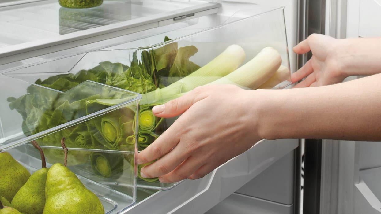 Эргономический холодильник